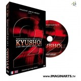 DVD Kyusho waza volume 2 - l'art de frapper les points vitaux